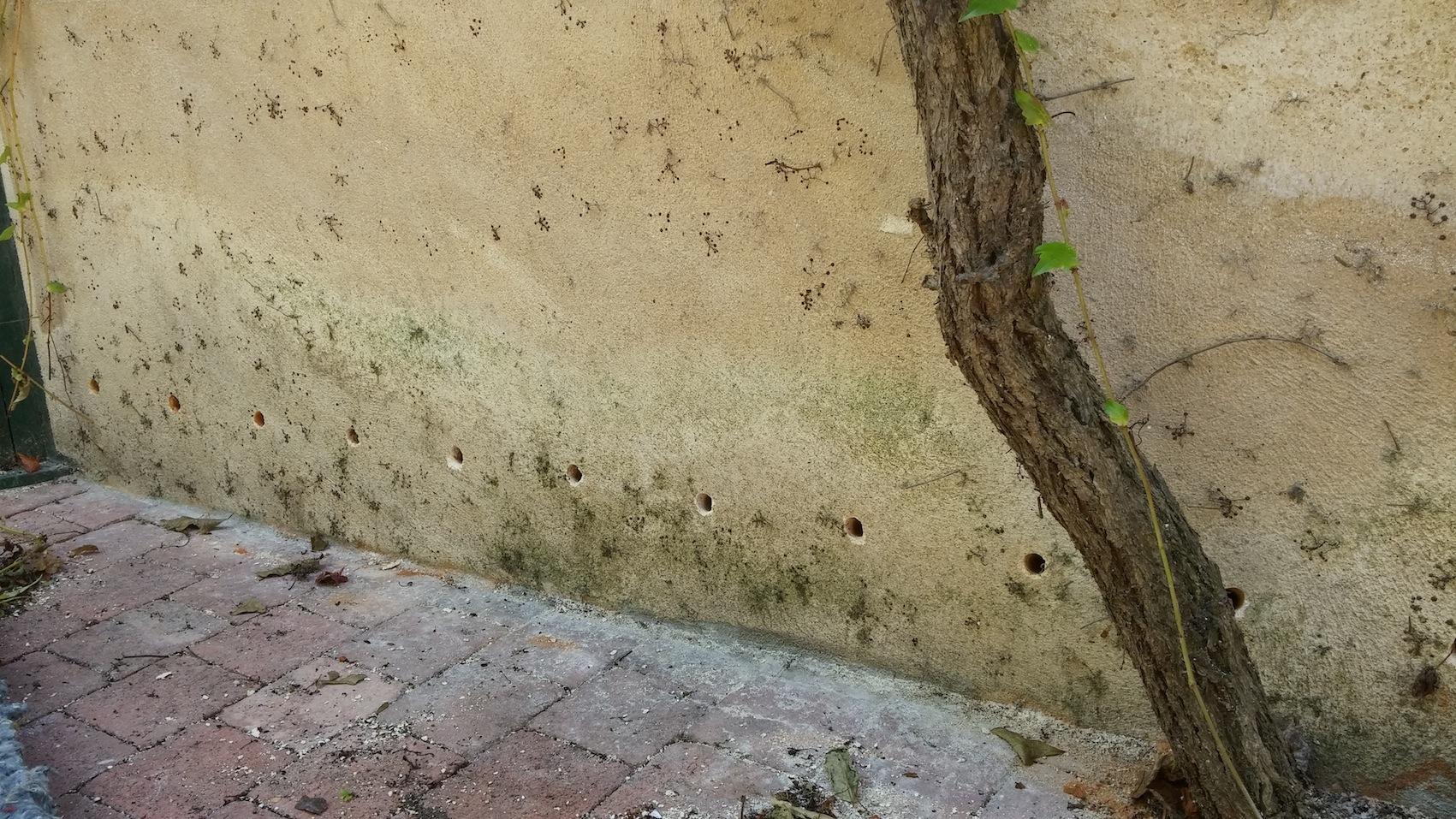 Problèmes d'humidité - Isol'Centre